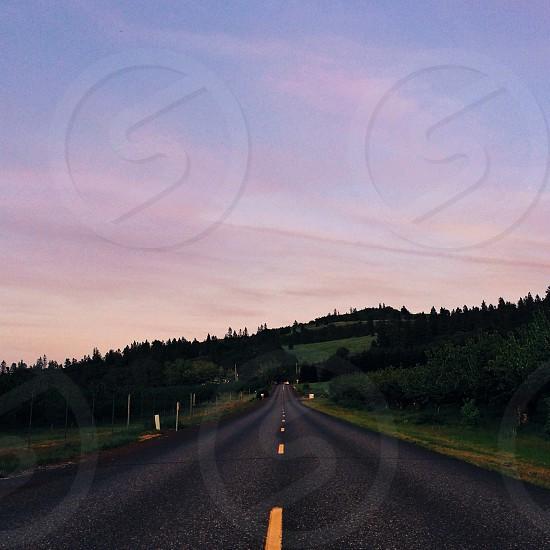 trees and gray asphalt road photo