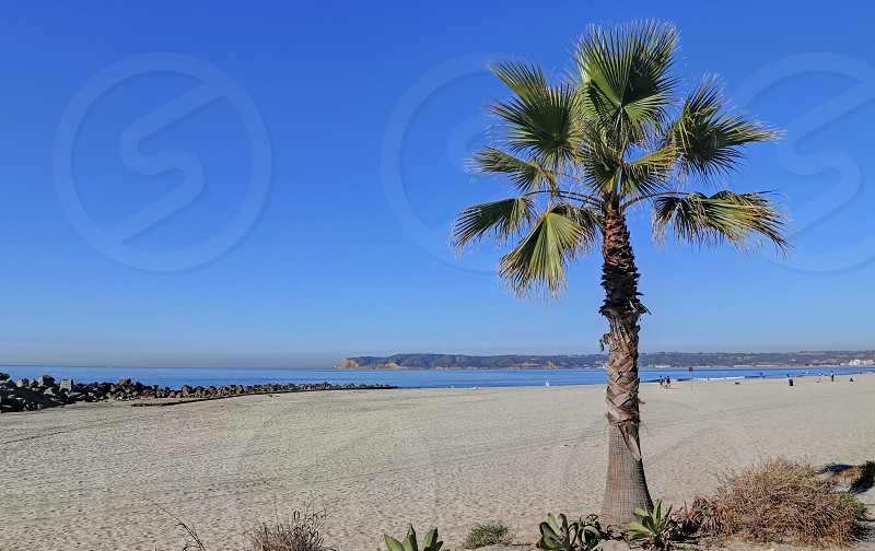 Coronado Beach just outside of San Diego California. photo