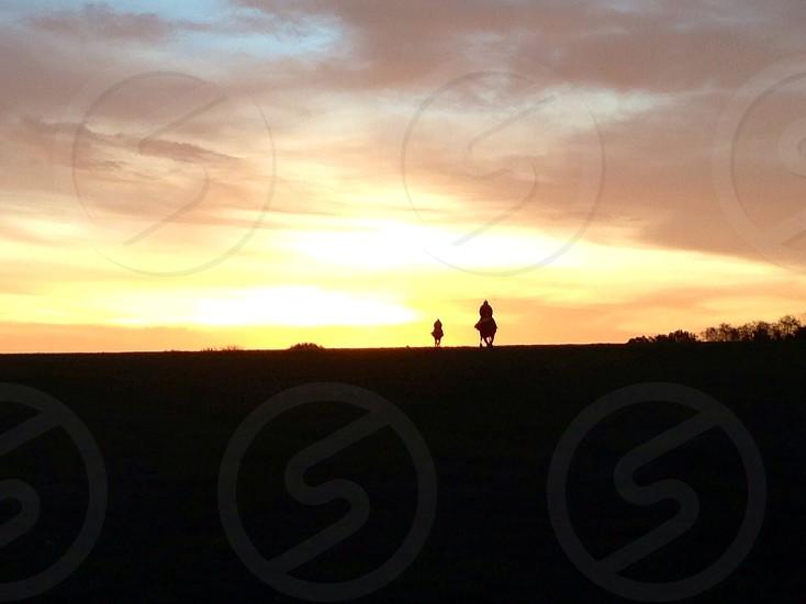 Racehorses exercising at sunrise on Epsom Downs photo