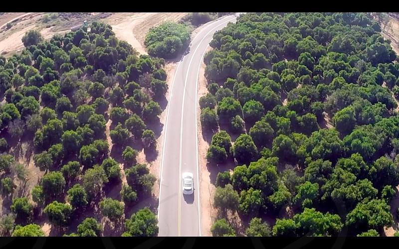 Aerial of a Mazda Speed 3 going through a valley of orange groves. photo
