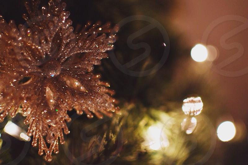 white star christmas decor photo