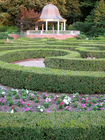 labyrinth maze greenery flowers trees gazebo girl running bushes photo