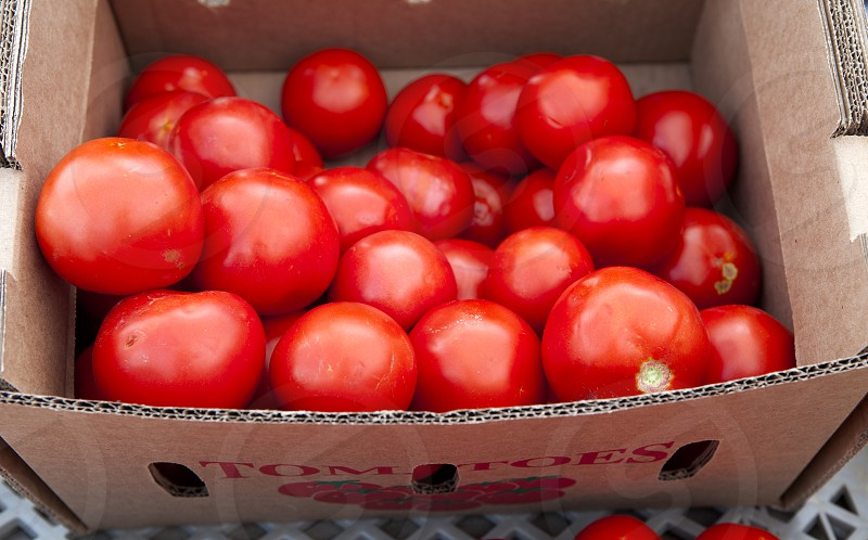 Food - Fresh Tomatoes in a box photo