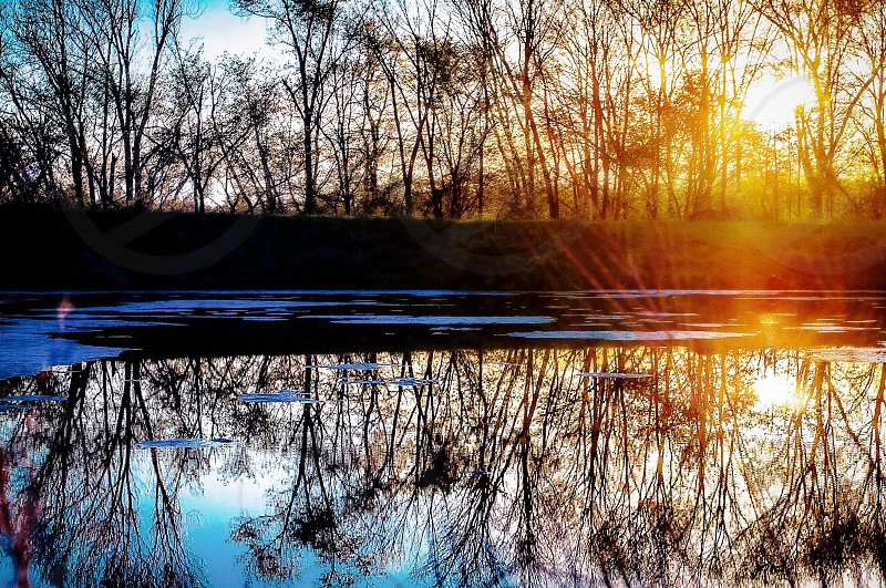 Reflection | Sunflare | Water | Pond | Landscape photo