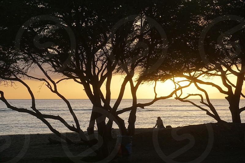 Sunset Maui photo