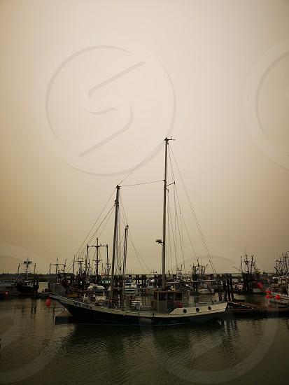 Visiting Fisherman's Wharf photo
