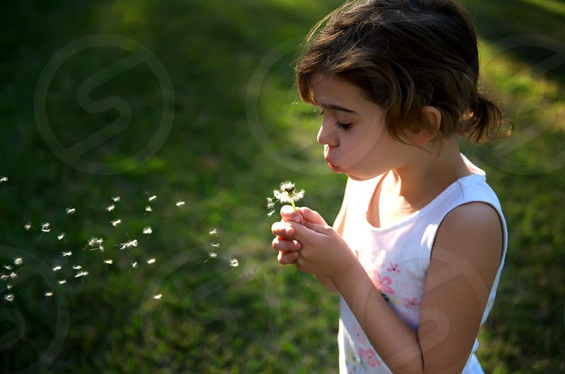 beautiful; blow; blowing; blue; caucasian; child; clock; color; colour; country; dandelion; day; female; field; flower; freedom; fun; future; girl; grass; hair; head; hispanic; holding; human; landscape; lips; little; natural; nature; one; outdoor; people; person; plant; play; portrait; seeds; side; sitting; sky; space; spring; summer; vacation; wallpaper; years; young; youth photo