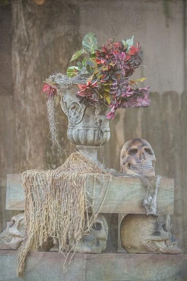 Skull Centerpiece a haunting Halloween decoration photo