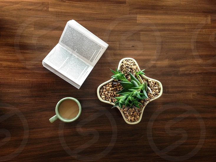 book and coffee photo