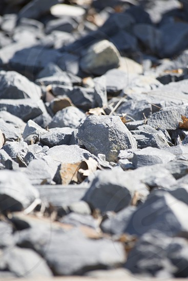 Close up of sharp gray gravel rocks and leaves photo