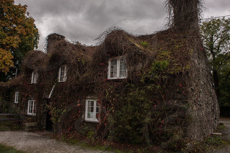 Historic property in Wales in autumn. photo