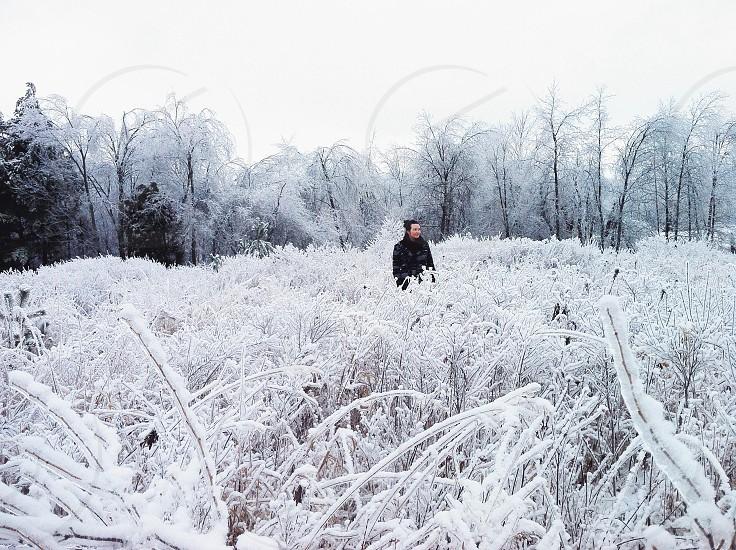 snowy field photography  photo