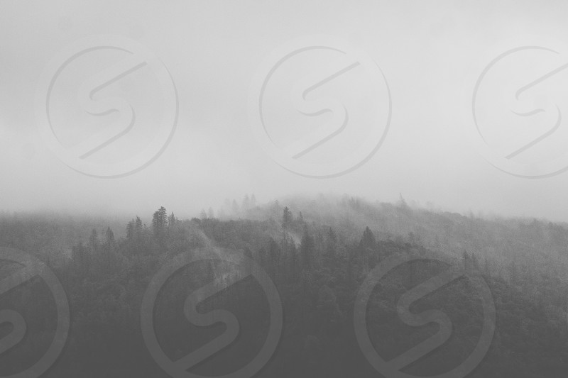 norcal fog gloomy ominous cloudy nature black and white landscape california mountain photo