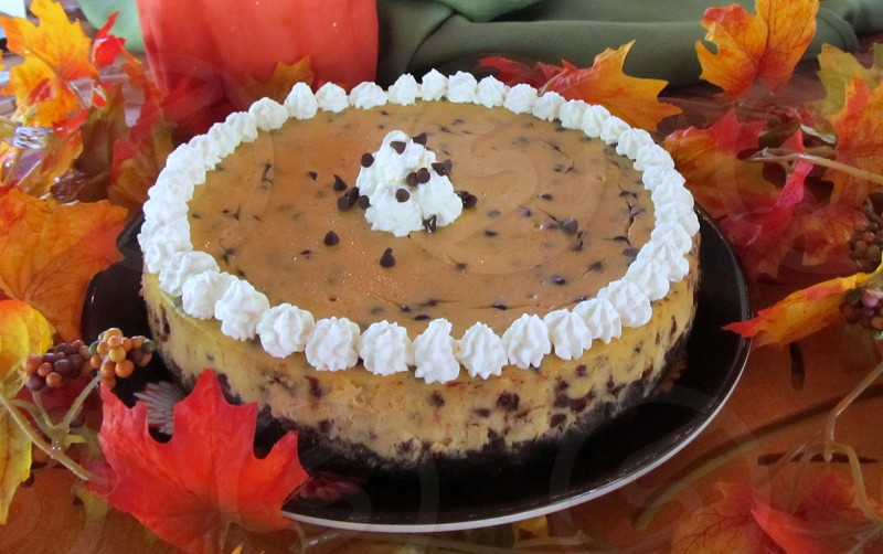 Chocolate chip pumpkin cheesecake with autumn leaves photo