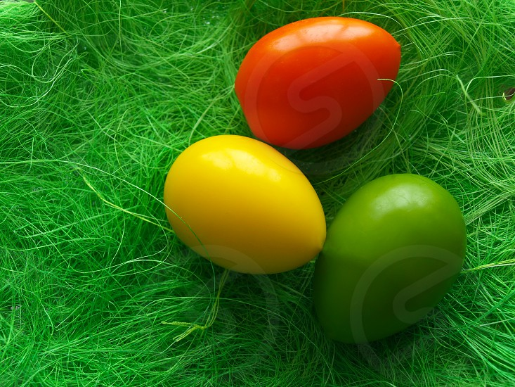 easter eggs colored green grass background decor photo