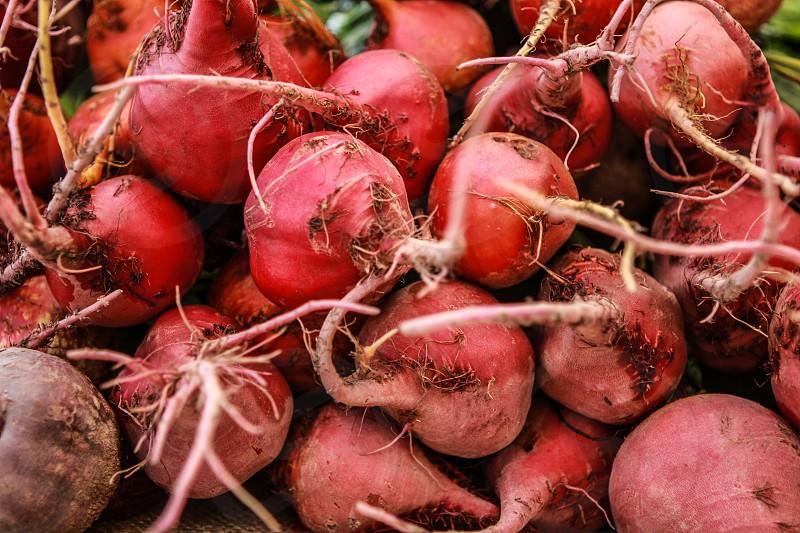 orange onions  photo