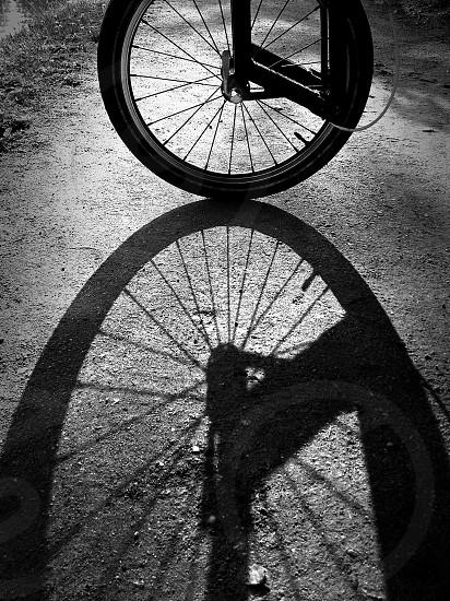 black bicycle tire photo