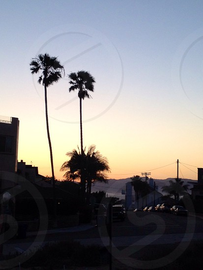 Sunset on the Hill - Playa del Rey CA photo