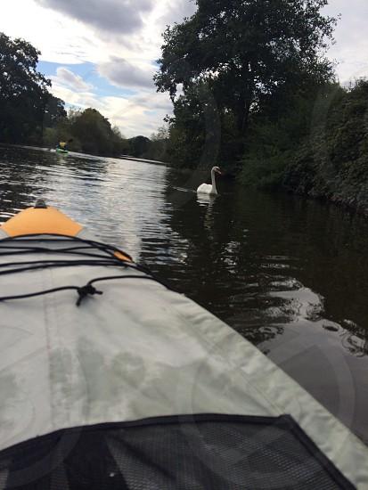 On the kayak photo