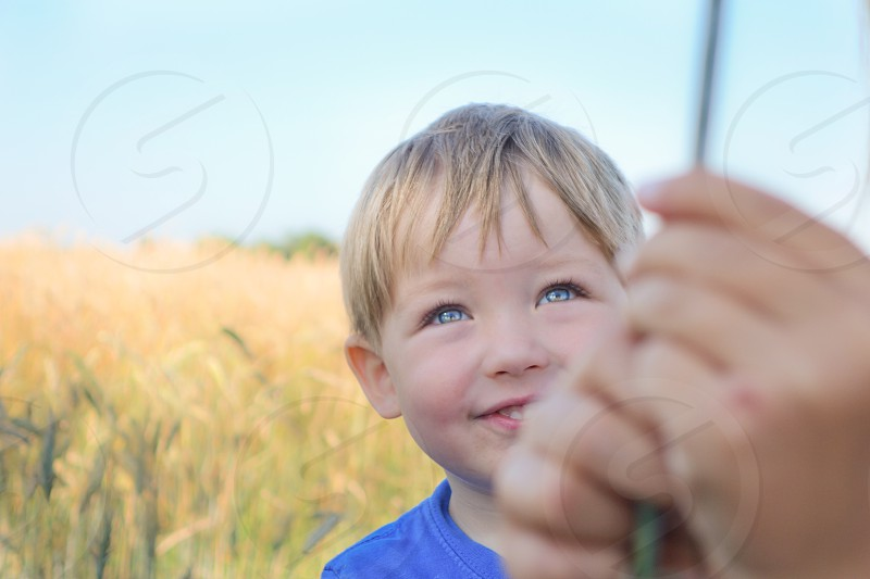 Cute boy playing in the cornfield  photo