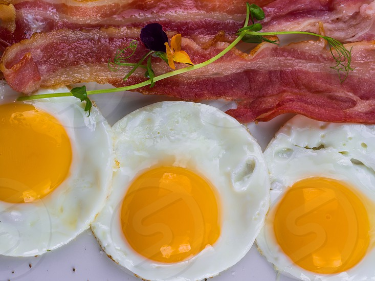 Fried egg with bacon on white plate. Delicious colorful English breakfast. photo