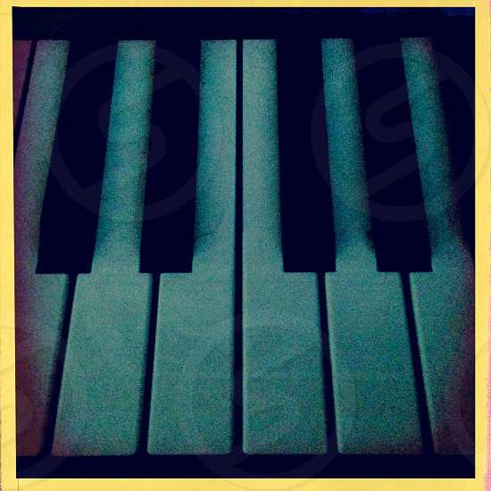 Piano keys - close up photo