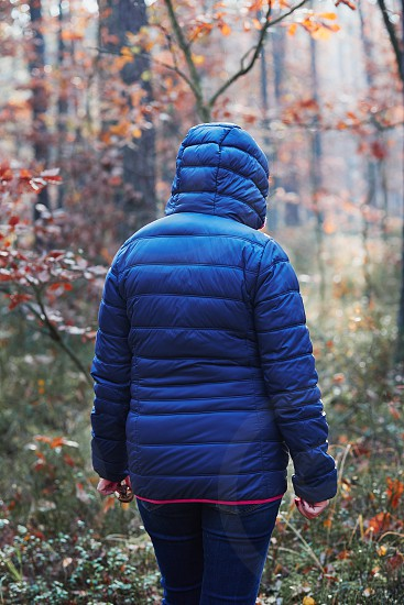 Rear view of woman walking in a forest. Forest in autumn season. Colorful foliage on trees lit by morning sunlight. Natural nature forest landscape in autumn warm sunlight day. Real people authentic situations photo