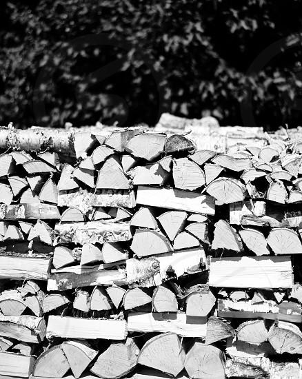 grayscale photography fire log photo