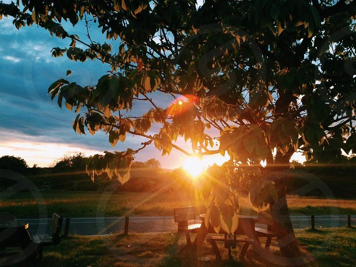 English pub sunset photo