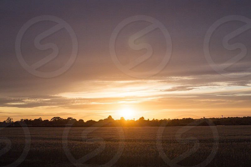 Norfolk UK England purple sunset wheat fields travel tourism open space background photo