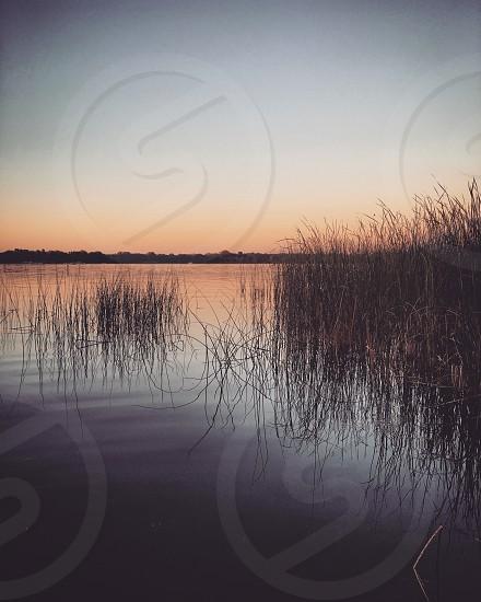 Lake and grasses at twilight photo