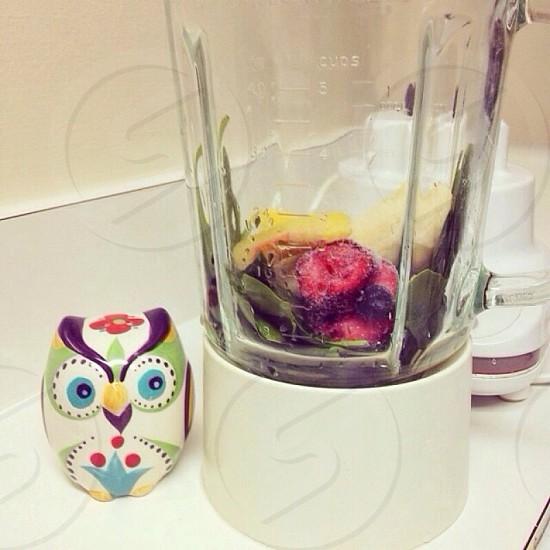 multicolored owl figurine beside food processor photo