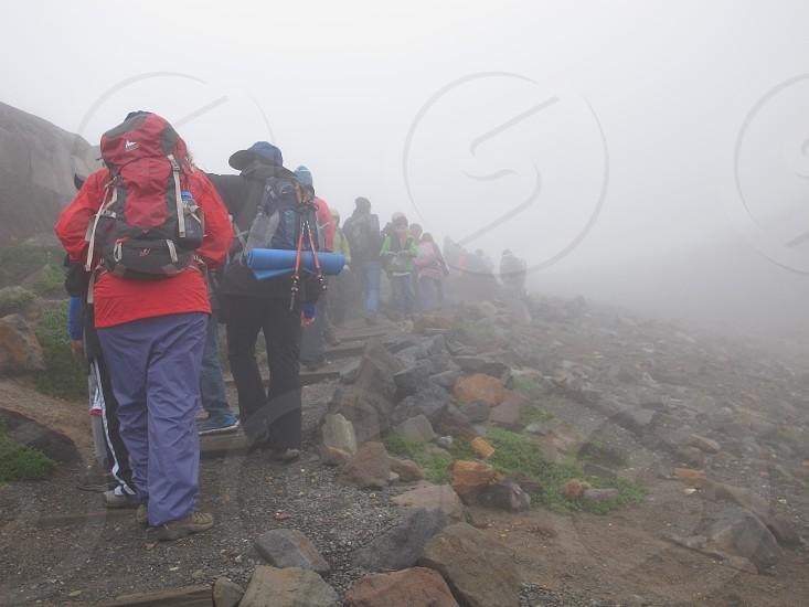 Into the Mist of Mt. Rainier photo