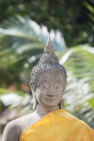 a buddha at the Wat yai chai mongkhon in the city of Ayutthaya north of bangkok in Thailand in southeastasia. photo