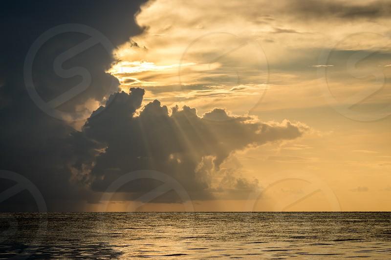 baño de sol sobre el mar photo