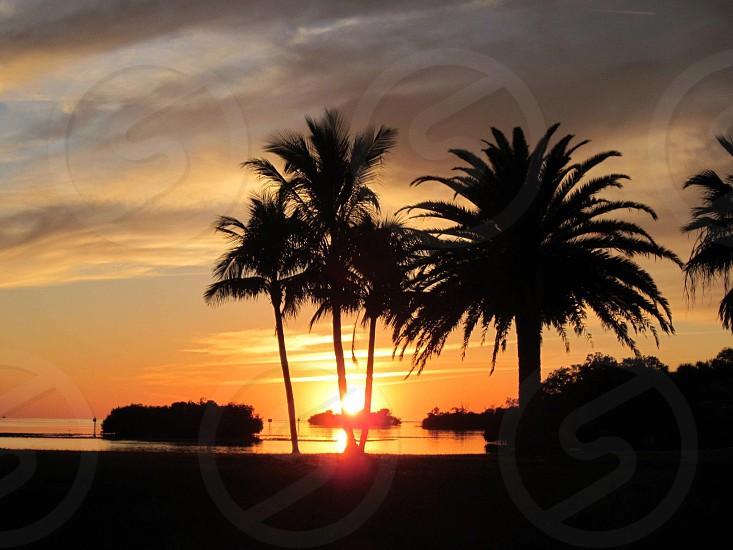 Sunset Punta Gorda photo