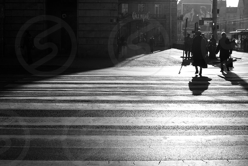 a lady crossing a zebra on the street  photo