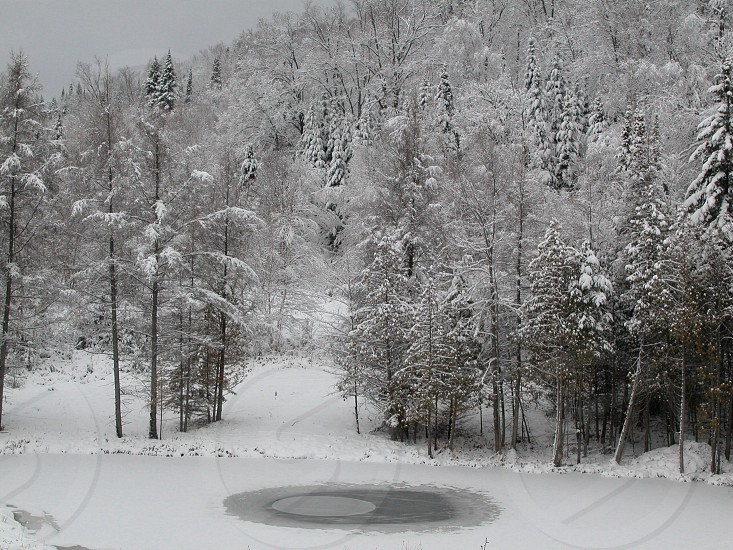 Winter pond photo