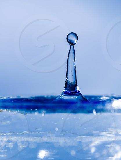Blue 11 photo