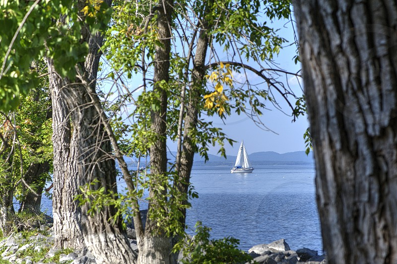 Sailboat framed with trees and mountains in the background. photo