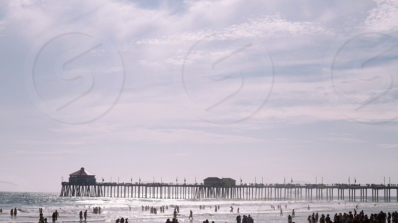 people on beach during daytime photo