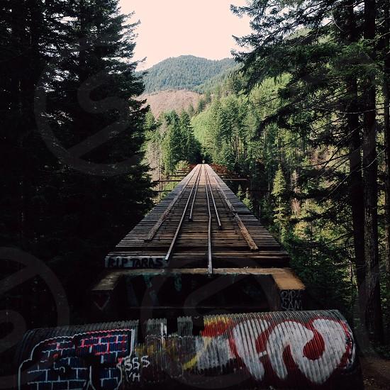 brown railway bridge photo