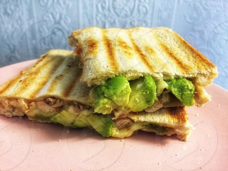 Chicken avocado toastie bread toast golden food calories light snack treat photo