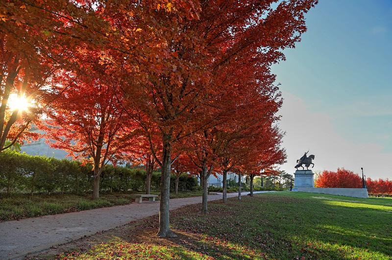 Fall foliage on Art Hill around the St. Louis Art Museum in St. Louis Missouri. photo