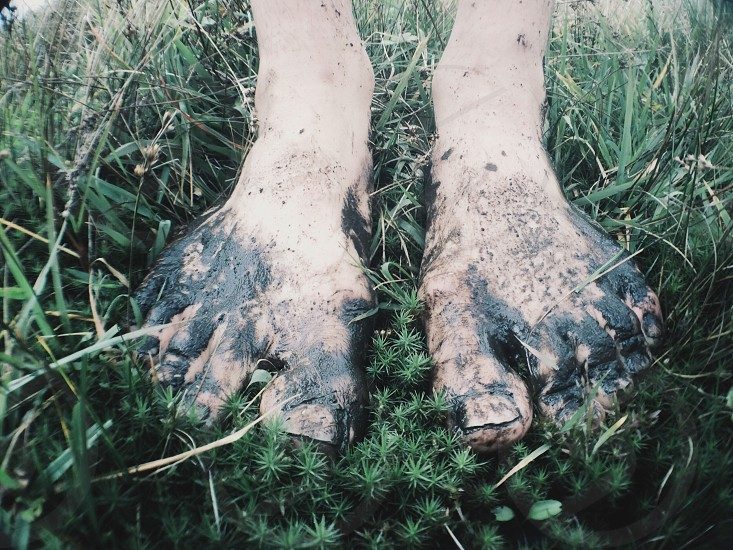 dirty human feet standing in green grass photo