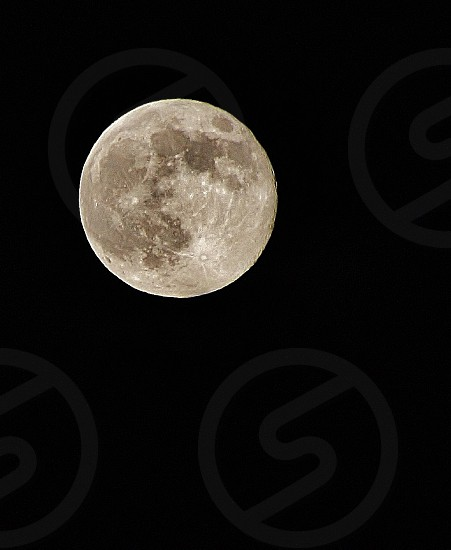 view full moon photo