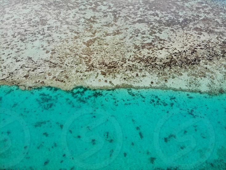 AboveaerialdronesealagoonMooreaPolynesiaclearwatercalmblueazure photo