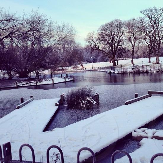 Winter at Albert Park photo