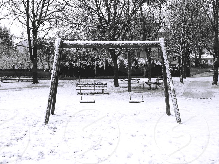 black swing photo