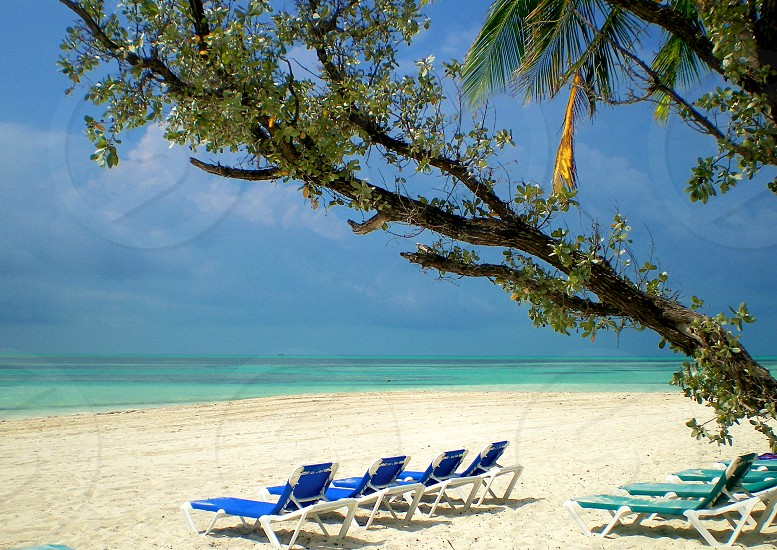 white and blue tannin chairs on beach photo